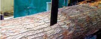 Ленточная пила по дереву Bahco 3861